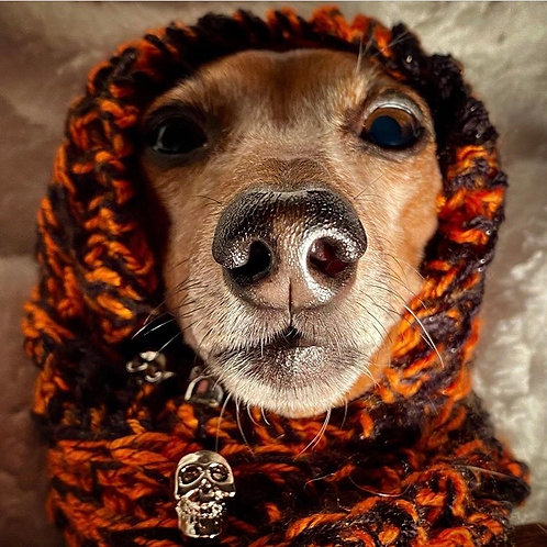Halloween Hand Knitted Dog Snood