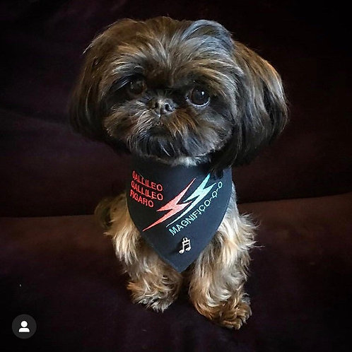 Bohemian Rhapsody Embroidered Dog Bandana