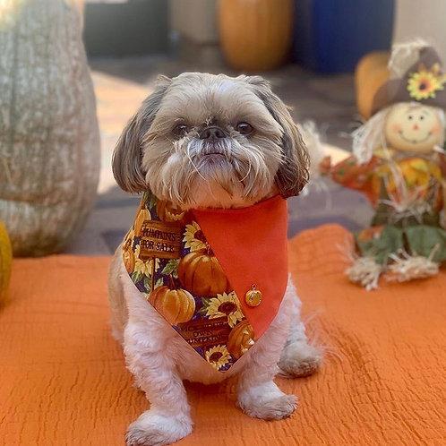 Autumn Fall Pumpkin Dog Bandana