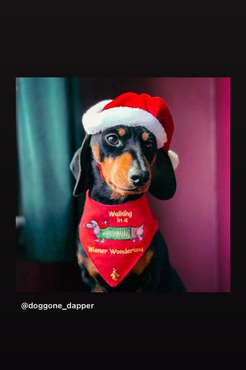 Christmas Dachshund Dog Bandana