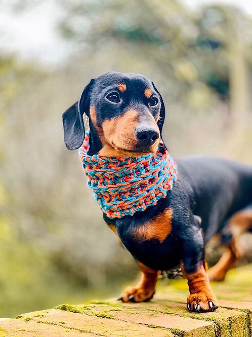 Aztec Hand Knitted Dog Snood