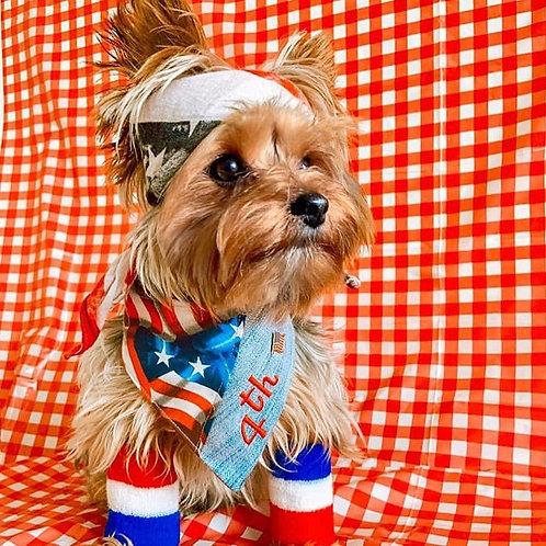 4th July Dog Bandana