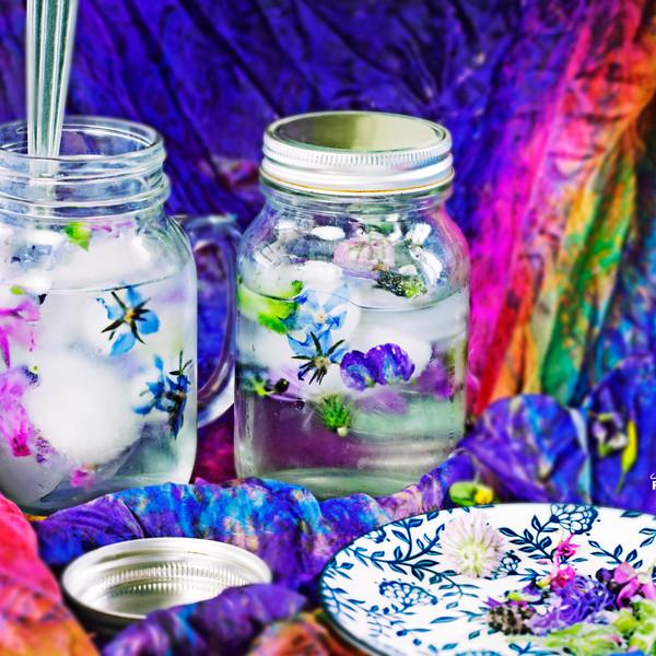 glacons et fleurs