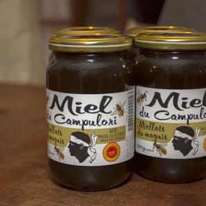 Miel du Campulori