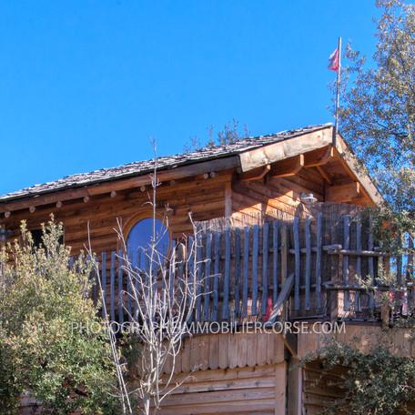 cabane dans les arbres Francardo centre corse