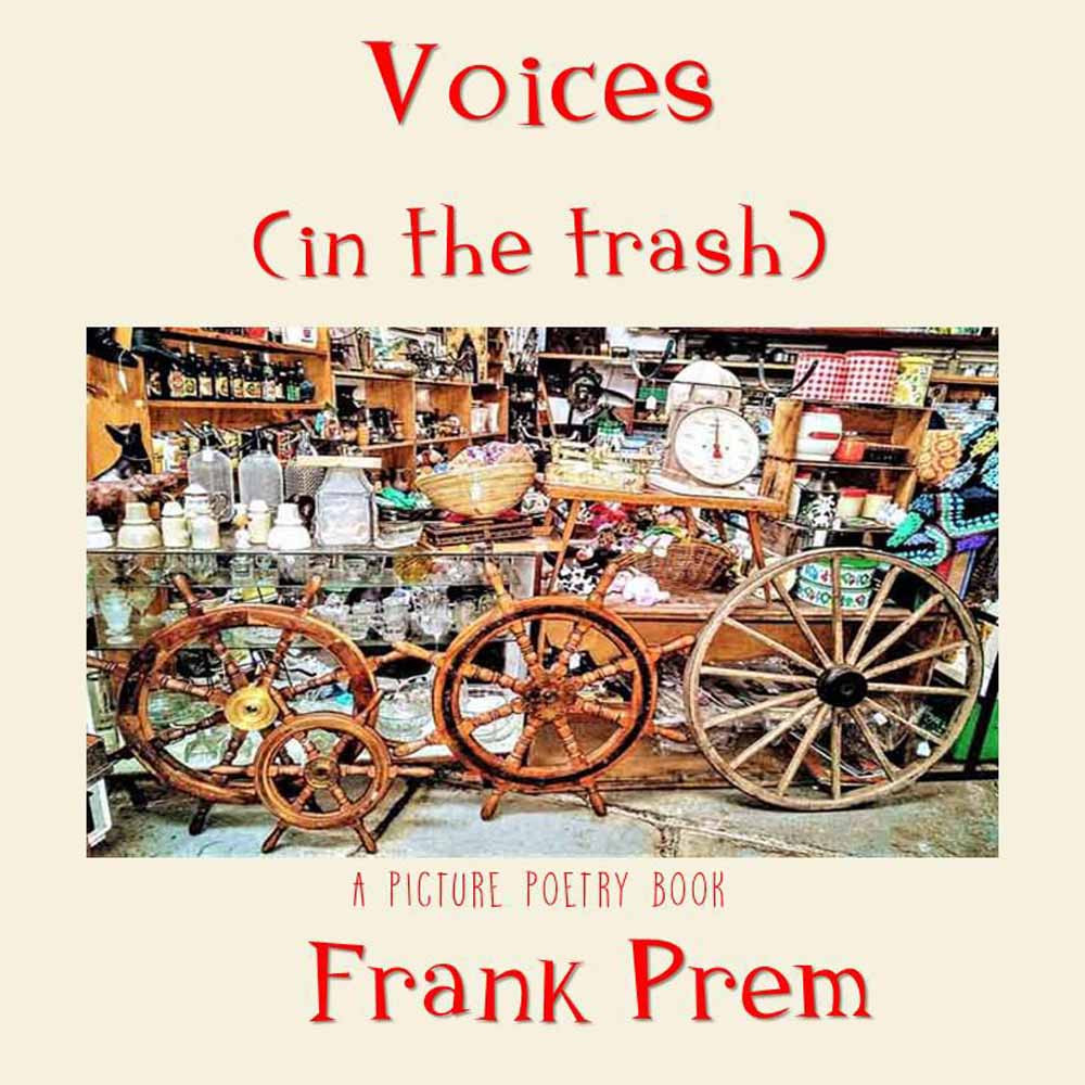 Cover of Voices in the Trash by Frank Prem