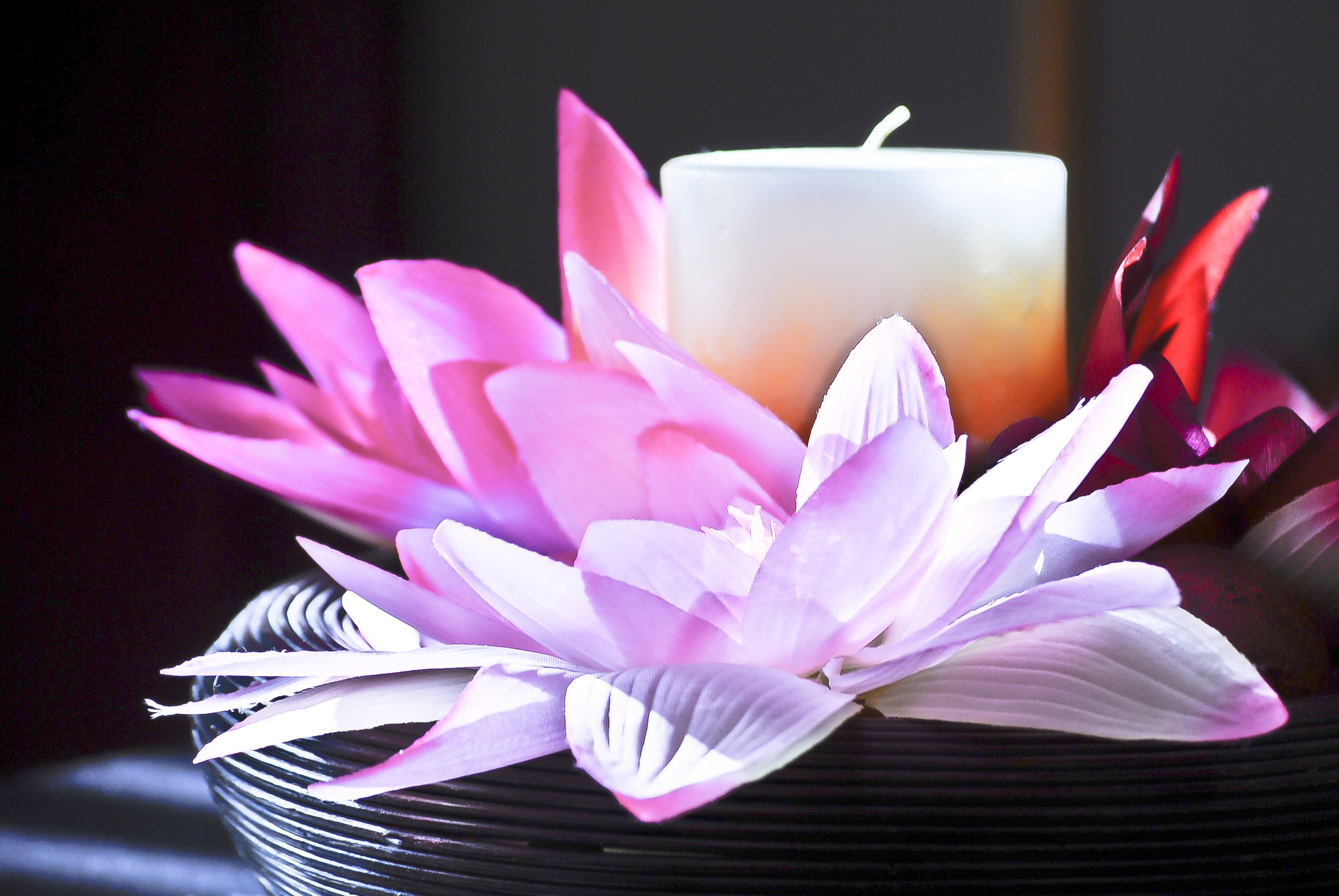 Lotus-Candle