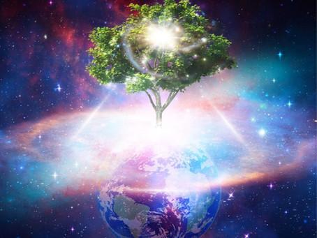 Resonance Alchemy Healing Sessions - Awakening the Tree of Life
