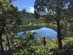 Turtle Lake1