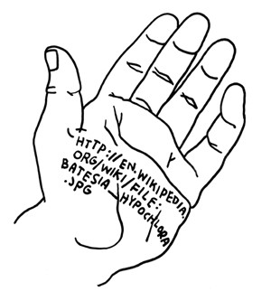 hand-with-website-reminder