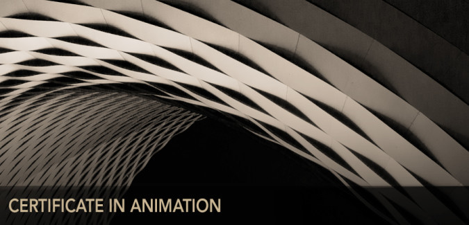 certificate in animation