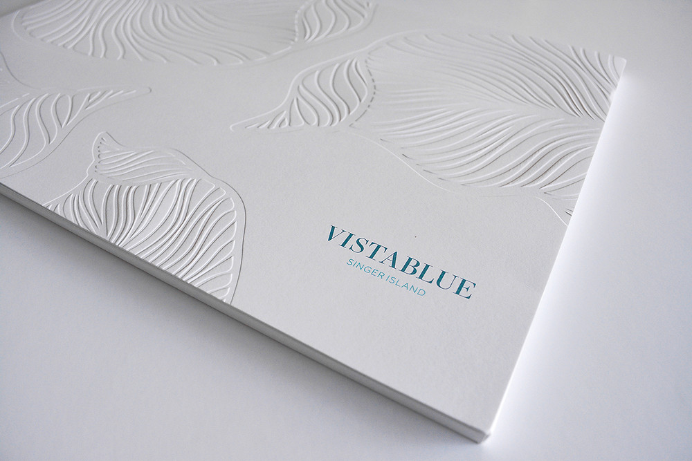 VistaBlue Full Brand Launch Campaign