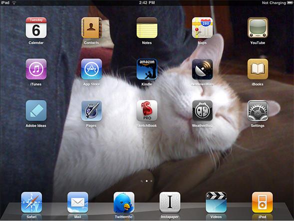Kitty on desktop