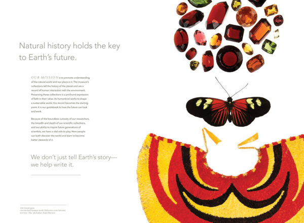 National Museum of Natural History Fundraising Brochure