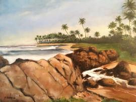 Sri Lankan Sunset