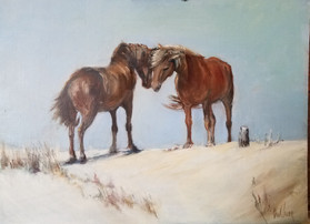 Pony Love Assateague Island