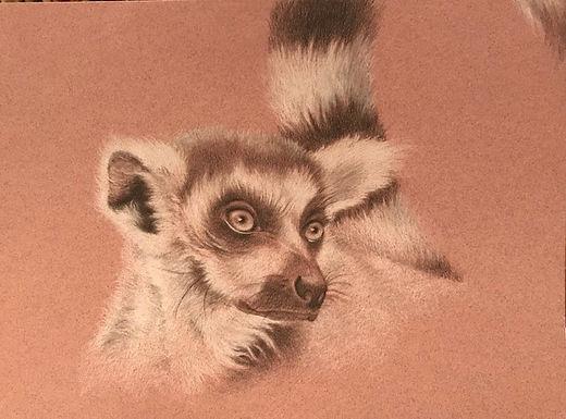 Larry Lemur
