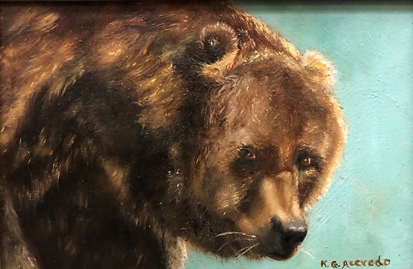 Portraitof a Brown Bear