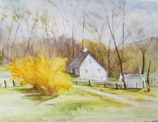 Sherwood Valley Spring