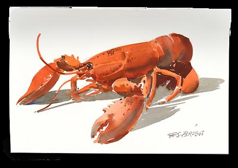 Lobster_edit.png