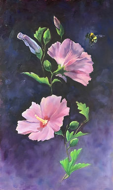Baltimore Rose of Sharon