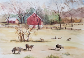 Butler Road Farm