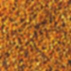 bee_pollen.jpg