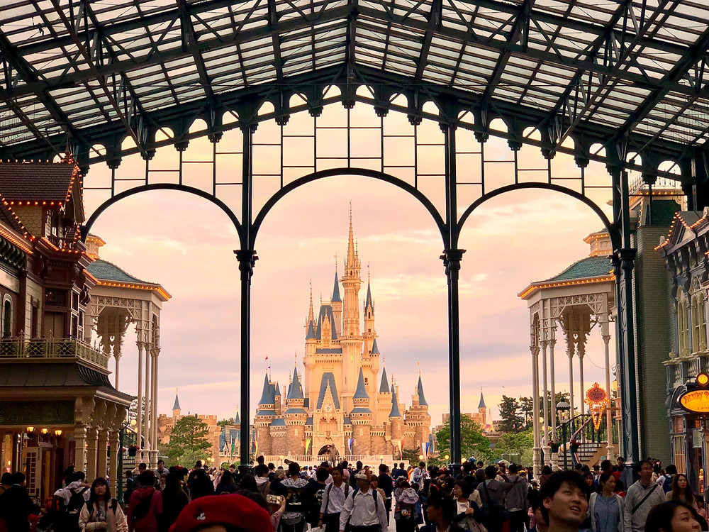 Tokyo Disneyland is an amusement park