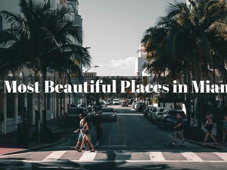 11 Most Beautiful Tourist Attractions in  Miami,FL
