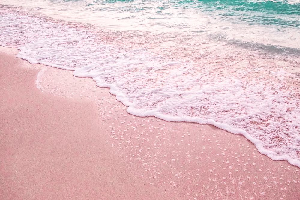 Pink sand beach barbuda beach photo