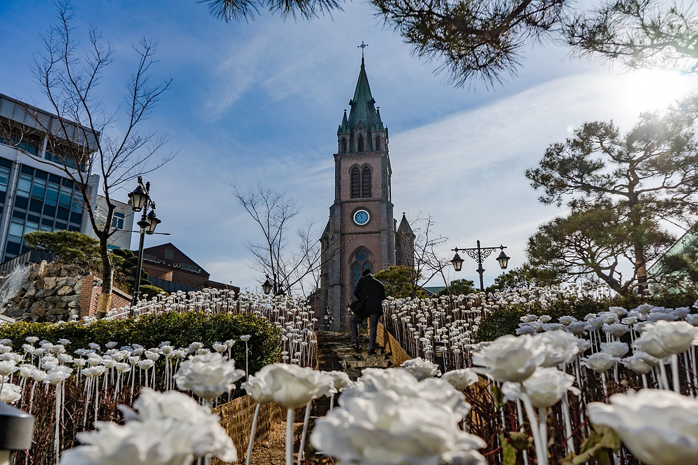Myeongdong Cathedral seoul