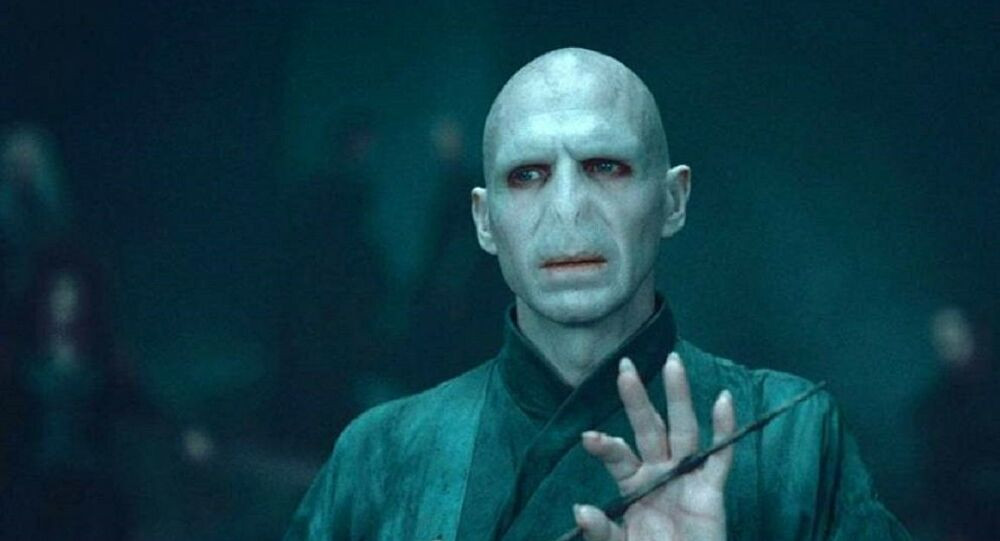 Lord Voldemort Harry Potter character