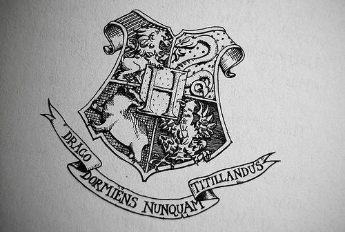 draco dormiens nunquam titillandus harry potter