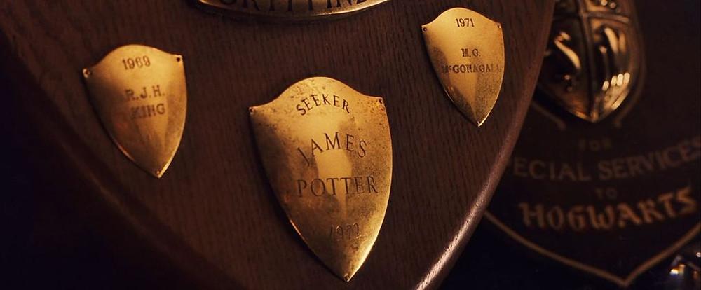 Professor Minerva McGonagall Harry Potter character