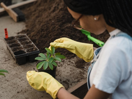 Tools and Tips to Help Nature Lovers Become Entrepreneurs