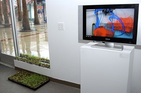 Gallery 1: L-R Anne Hars In Clover Plant Installation  Semiconductor  Magnetic Movie