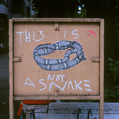 Untitled_This is Not a Snake