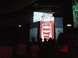 Woman Gleaning  Video Installation - Single channel projection LadyFest Berlin Venue: Club SO 36 August 13, 2011 Photo by S. Allespach