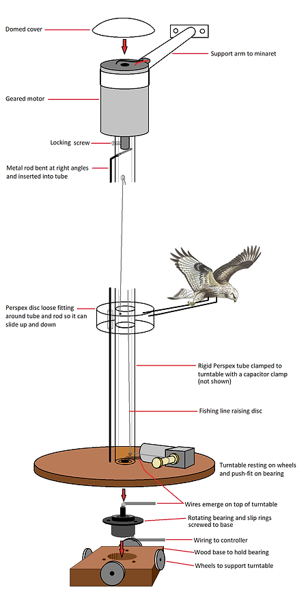 Birds mechanism.bmp
