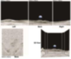 Diorama panels.jpg
