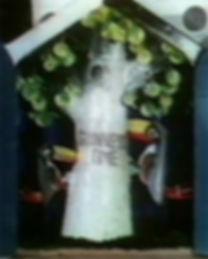 Toucans 2.jpg