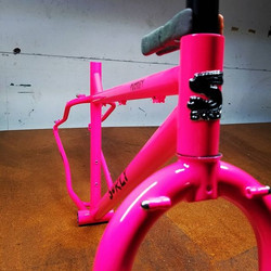 Pink Surly