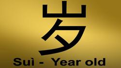 Chinese-mandarin-Hsk1-Flashcards-zuo (2)