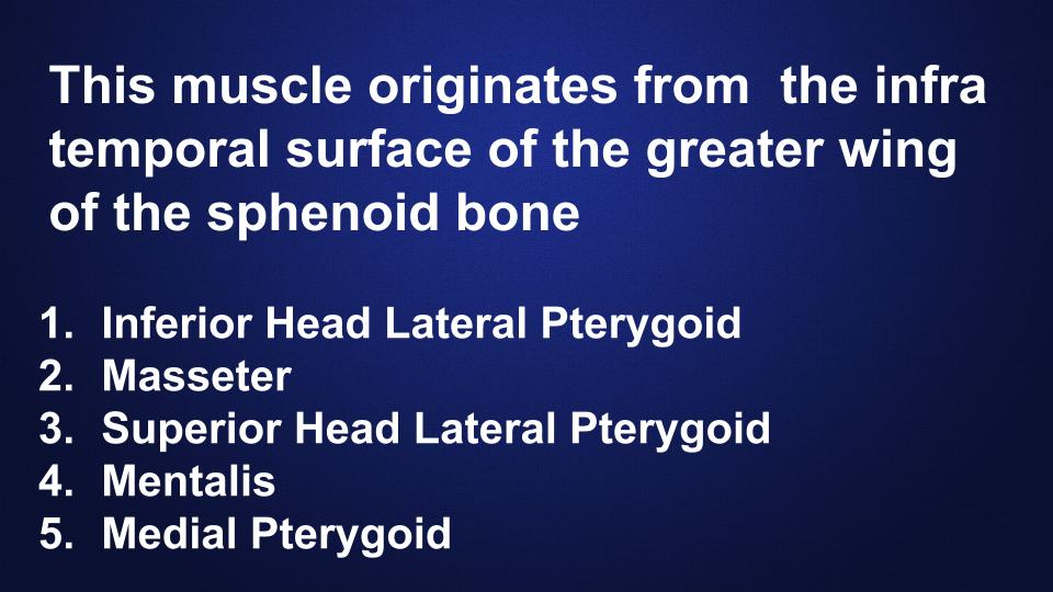 head-neck-anatomy-quiz-hygiene