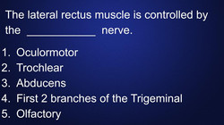 lateral-rectus-muscle-head-neck-anatomy.