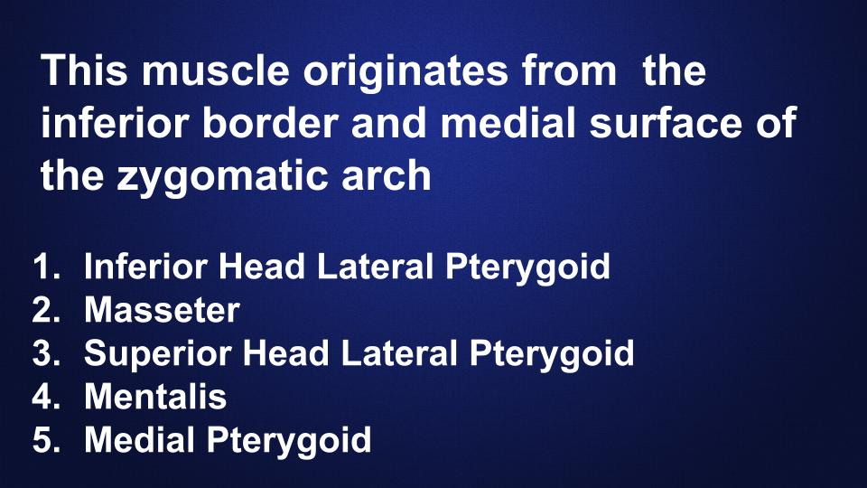 muscles-head-neck-anatomy-hygiene-quiz