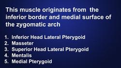 muscles-head-neck-anatomy-hygiene-quiz