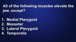 jaw-elevation-muscle-hygiene-quiz
