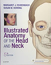 illustrated-anatomy-head-neck.jpg
