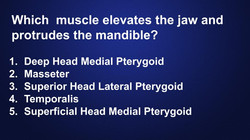 muscle-action-dentist-quiz
